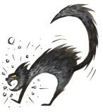 cat copy